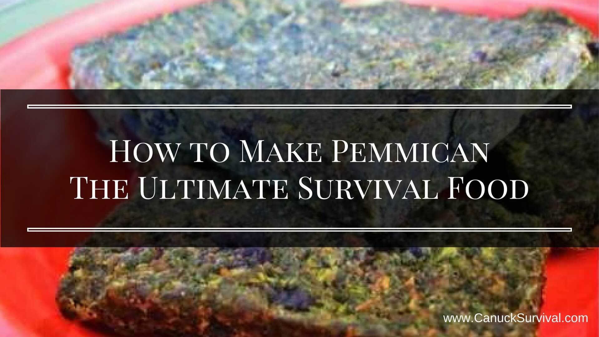 How to Make Pemmican The Ultimate Survival Food